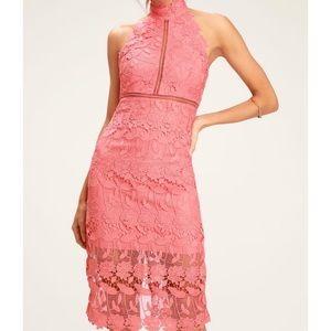 Bardot lace halter midi dress